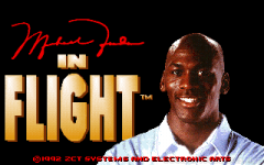 Michael Jordan in Flight thumbnail