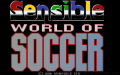 Sensible World of Soccer zmenšenina 1